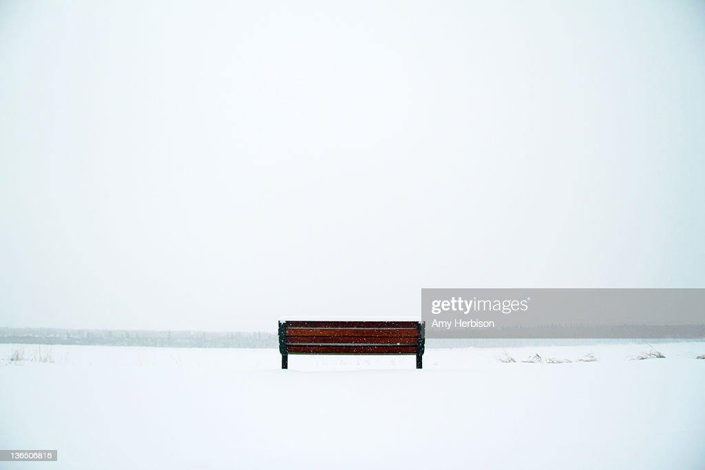 Bench in snow field