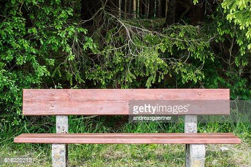 Bench in spring : Stockfoto