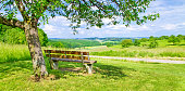 Bench in an summer landscape - Baden Württemberg, Germany