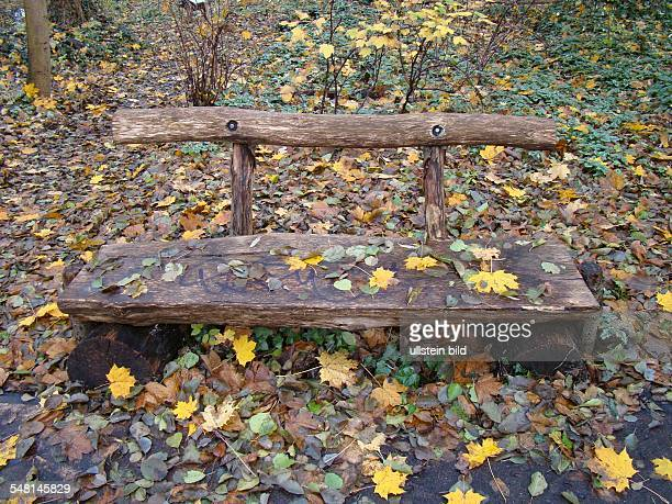bench made of wood in autumn
