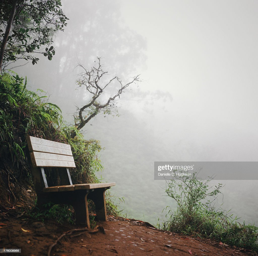 Bench on hillside in foggy tropical forest : Stock Photo