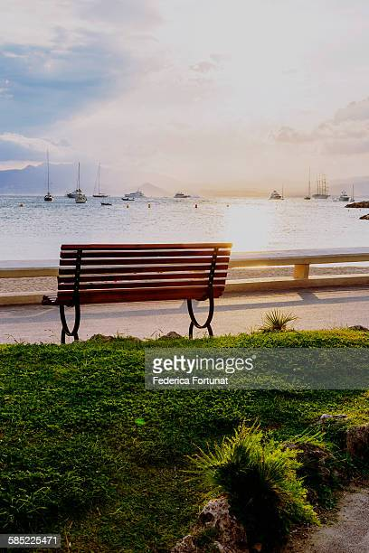 Bench on the Croisette