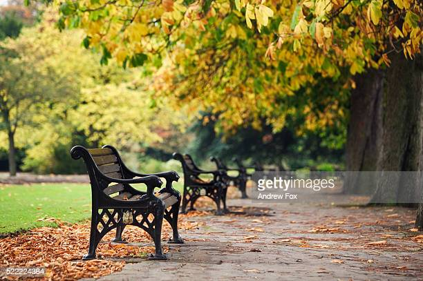 Benches in Cannon Hill Park