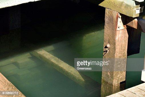 Beneath the Wharf : Stock Photo