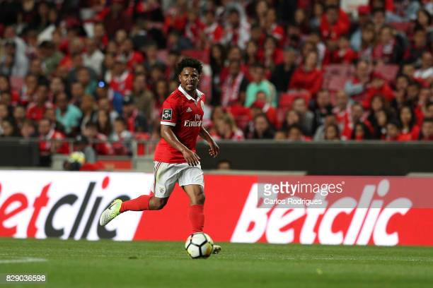 Benfica's defender Eliseu from Portugal during the match between SL Benfica and SC Braga for the fruit round of the Portuguese Primeira Liga at...
