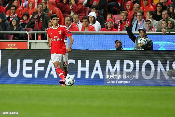 Benfica's forward Goncalo Guedes during the match between SL Benfica and FC Astana for the UEFA Champions League at Estadio da Luz on August 29 2015...