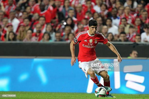 Benfica's forward Goncalo Guedes during the match between SL Benfica and Boavista FC at Estadio da Luz on November 8 2015 in Lisbon Portugal