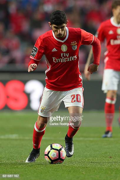 Benfica's forward Goncalo Guedes from Portugal during the match between SL Benfica and Boavista FC for the Portuguese Primeira Liga at Estadio da Luz...