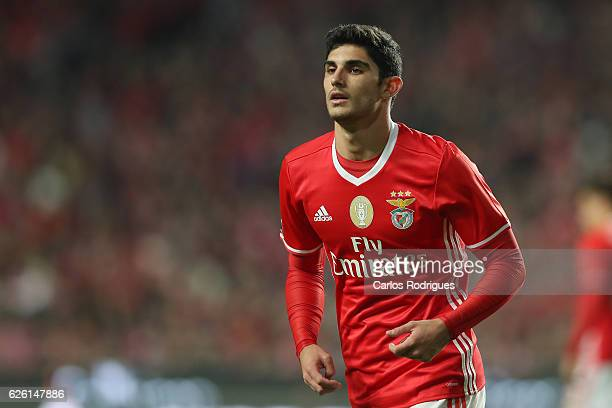 Benfica's forward Goncalo Guedes from Portugal during the match between SL Benfica v Moreirense FC Primeira Liga at Estadio da Luz on November 27...
