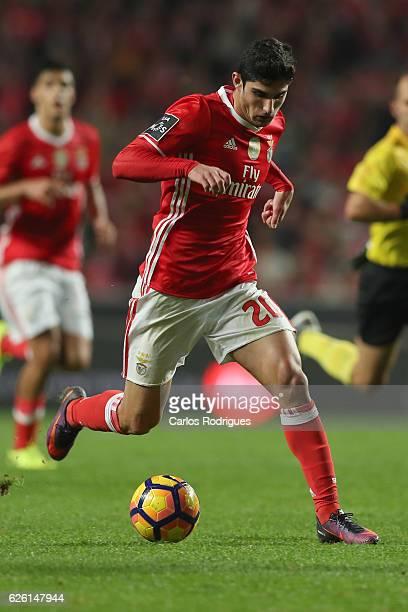 Benfica's forward Goncalo Guedes from Portugal during the match between SL Benfica v Moreirense FC Primeira Liga at Estadio da Luz on November 27...
