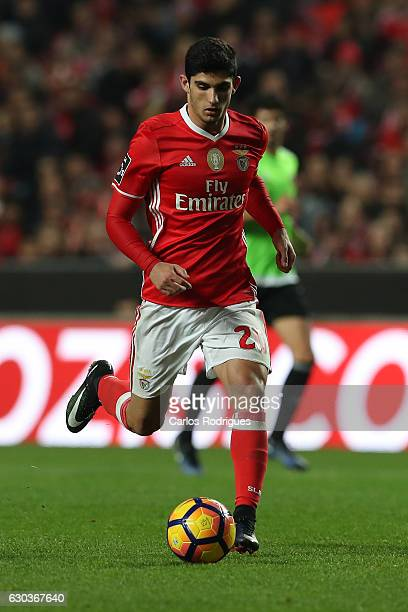 Benfica's forward Goncalo Guedes from Portugal during the match between SL Benfica v Rio Ave FC for the Portuguese Primeira Liga at Estadio da Luz on...