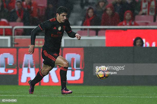 Benfica's forward Goncalo Guedes from Portugal during the SL Benfica v CS Maritimo Portuguese Cup round 4 match at Estadio da Luz on November 19 2016...