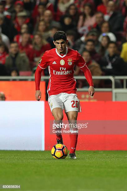 Benfica's forward Goncalo Guedes from Portugal during the SL Benfica v FC Pacos de Ferreira Portuguese Cup at Estadio da Luz on December 29 2016 in...