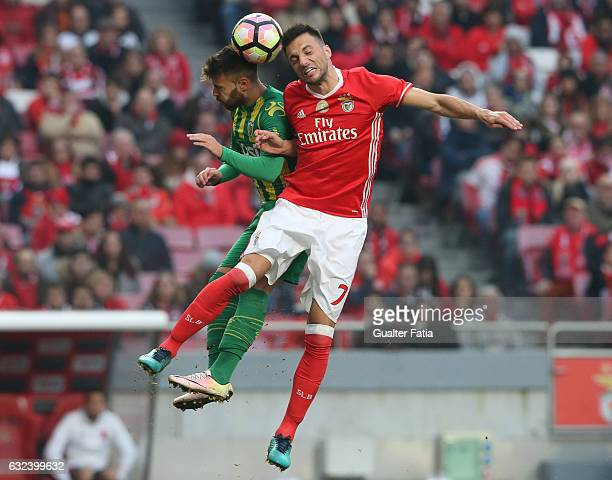 BenficaÕs midfielder from Greece Andreas Samaris with Tondela's forward Miguel Cardoso from Portugal in action during the Primeira Liga match between...