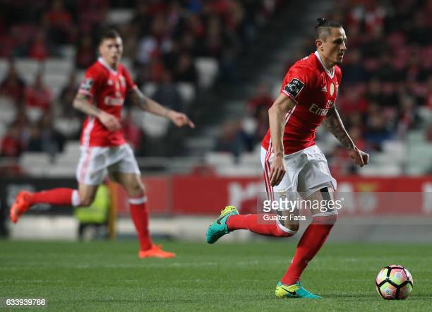 Benfica's midfielder from Serbia Ljubomir Fejsa in action during the Primeira Liga match between SL Benfica and CD Nacional at Estadio da Luz on...