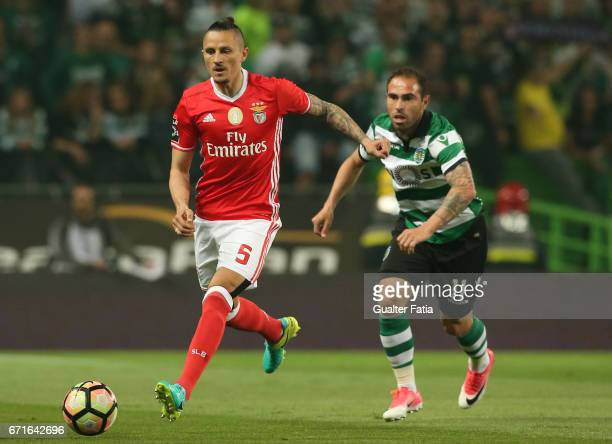 BenficaÕs midfielder from Serbia Ljubomir Fejsa with Sporting CPÕs midfielder Bruno Cesar from Brazil in action during the Primeira Liga match...