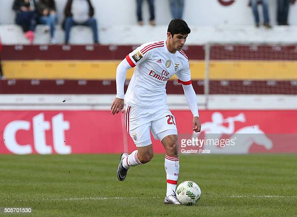 Benfica's midfielder Goncalo Guedes in action during the Taca da Liga match between Oriental Lisboa and SL Benfica at Estadio Engenheiro Carlos...