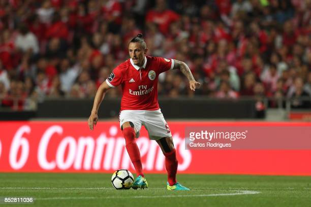 Benfica's midfielder Ljubomir Fejsa from Serbia during the match between SL Benfica and FC Paco de Ferreira for the round seven of the Portuguese...