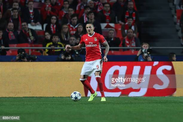 Benficas midfielder Ljubomir Fejsa from Serbia during the SL Benfica v Borussia Dortmund UEFA Champions League16 Final match at Estadio da Luz on...