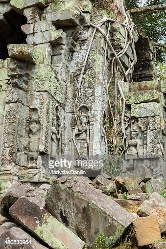 Bachelor of Engineering Mealea Tempio, Angkor, Cambogia : Foto stock