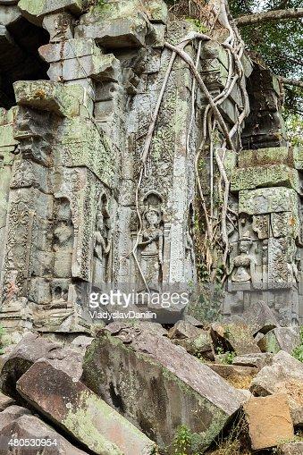 Beng Mealea Temple, Angkor, Cambodia : Stock Photo