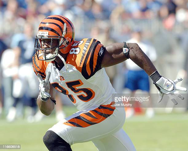 Bengals Chad Johnson runs downfield during first half action between the Cincinnati Bengals and the Tennessee Titans at The Coliseum in Nashville...