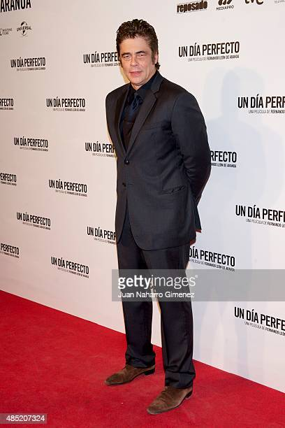 Benicio del Toro attends 'Un Dia Perfecto' premiere at Palafox Cinema on August 25 2015 in Madrid Spain