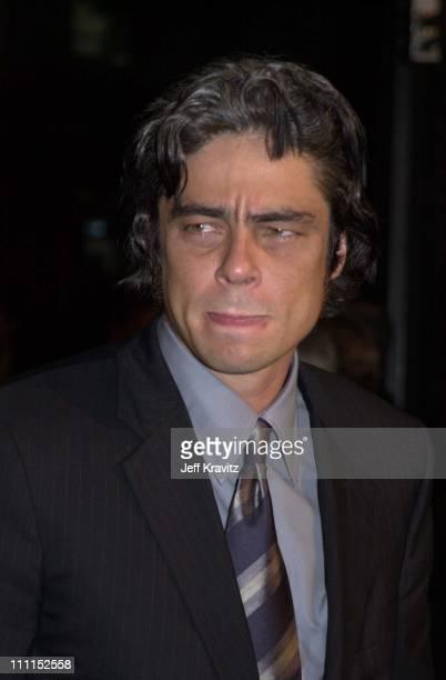 Benicio del Toro during The Pledge