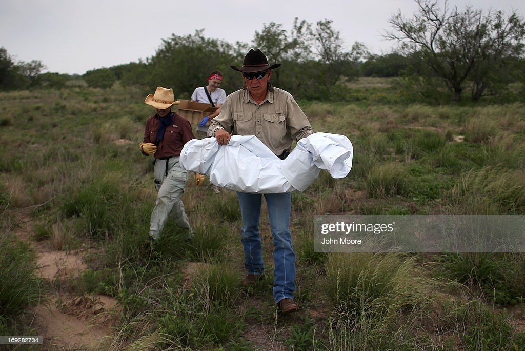 Benny Martinez, Chief deputy of the Brooks County Sheriff's Department, carries the human remains of a suspected undocumented immigrant scattered on a ranch and found by the U.S. Border Patrol on May 22, 2013 in Falfurrias, Brooks County, Texas. In Brooks County alone, at least 129 immigrants perished in 2012, most of dehydration while making the long crossing from Mexico. Teams from Baylor University and the University of Indianapolis are exhuming the bodies of more than 50 immigrants who died, mostly from heat exhaustion, while crossing illegally from Mexico into the United States. The bodies will be examined and cross checked with DNA sent from Mexico and Central American countries, with the goal of reuniting the remains with families.