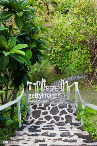 Bequia, detail of the Spring Sugar Plantation : Stock Photo