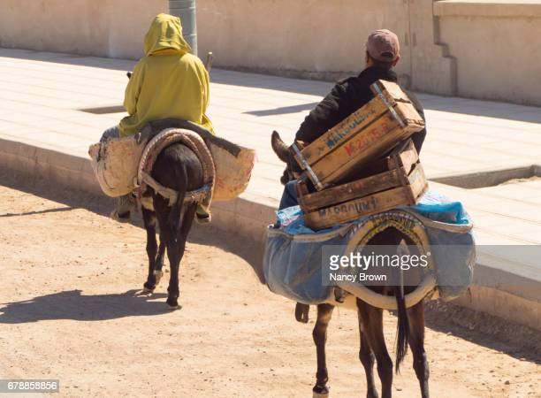 Berber Man and Woman on Donkeys on Road near Marrakesh in Morocco.