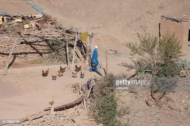 Berber Woman Feeding Chickens