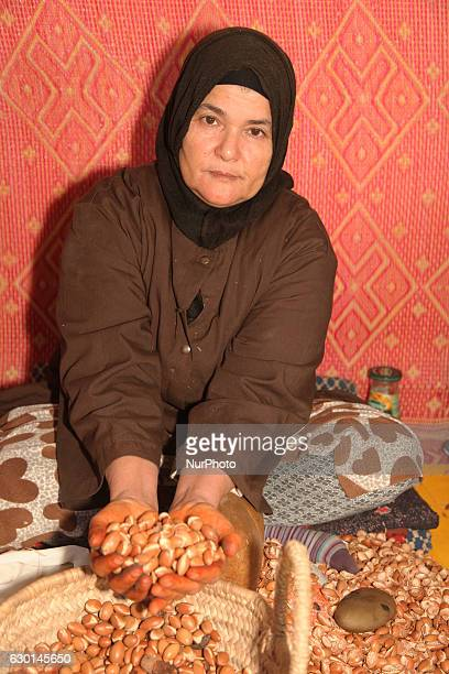 Berber woman holding argan nuts at the argan oil cooperative in Morocco Africa on 17 December 2016 Argan oil is used both for food and as an...