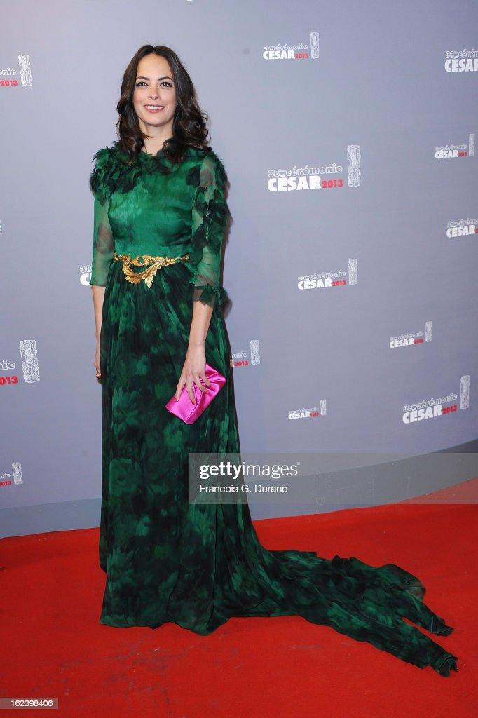 Berenice Bejo arrives at Cesar Film Awards 2013 at Theatre du Chatelet on February 22, 2013 in Paris, France.