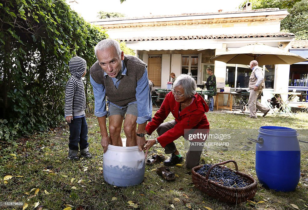 FRAYSSE - Berenice Chang Ricard (R) and her husband Alain crush the grapes they harvested in the garden of their house to make wine, on September 27, 2012 in Bordeaux, southwestern France.
