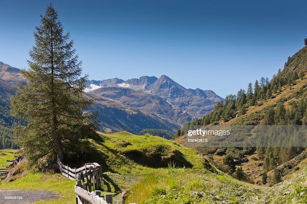 Bergwelt in Obergurgl - Tirol : Stock Photo