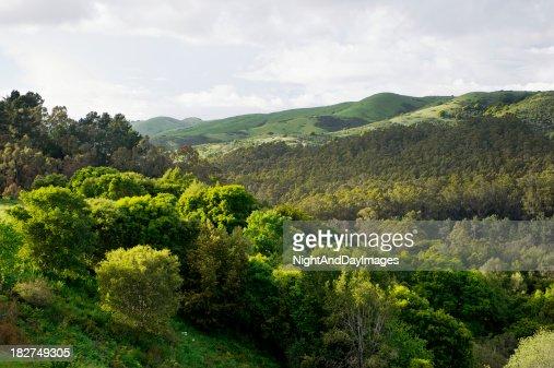 Berkeley Hills-Área de la bahía de San Francisco, California