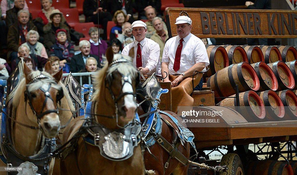 Berliner Kindl beer barrels are transported on a horse carriage during the opening of the Gruene Woche (Green Week) Agricultural Fair in Berlin on January 18, 2013. This year the official partner country of the fair is The Netherlands. EISELE