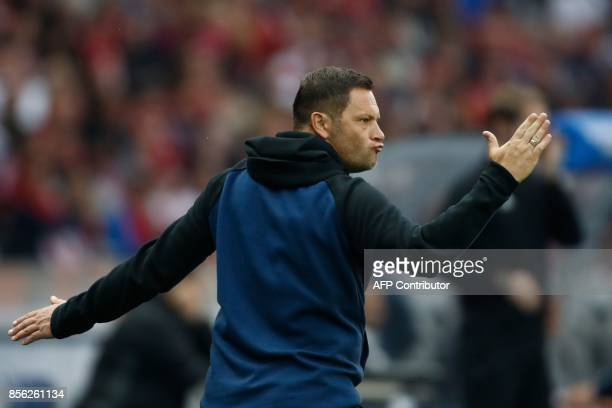 Berlin's Hungarian head coach Pal Dardai gestures from the sidelines during the German first division Bundesliga football match between Hertha Berlin...