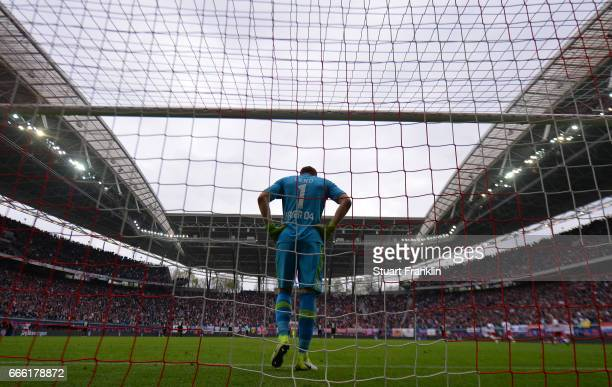 Bernd Leno of Leverkusen looks dejected during the Bundesliga match between RB Leipzig and Bayer 04 Leverkusen at Red Bull Arena on April 8 2017 in...
