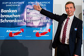 Bernd Lucke head of the Alternative fuer Deutschland political party poses for the photographers after finishing a pressconference the day after the...