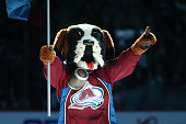 Bernie the mascot of the Colorado Avalanche skates prior to the game against the Dallas Stars at the Pepsi Center on January 10 2015 in Denver...