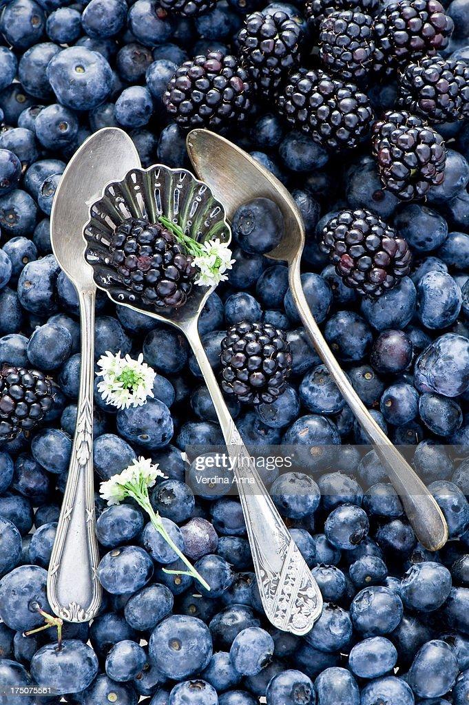 Berries (365) : Stock Photo