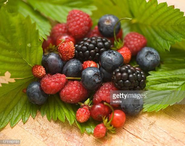 berry fruits Walderdbeeren