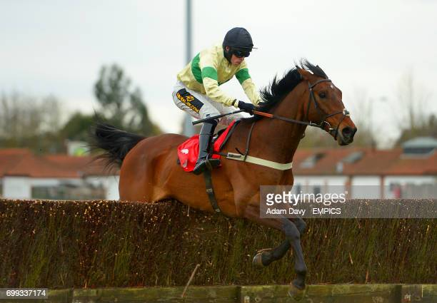 Bertenbar ridden by jockey J M Davies competes in the Watch On 3 Devices Racingukcom Handicap Chase