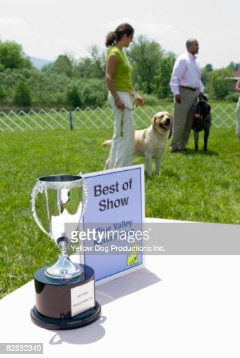 Best in Show trophy at show : Stock Photo
