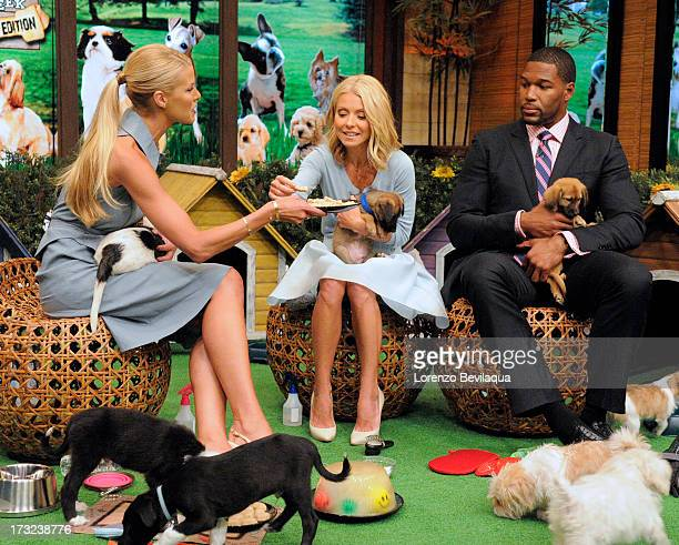 MICHAEL 8/19/13 Beth Stern has some puppy treat tips for LIVE's 'Bow Wow Week Puppy Edition' on 'LIVE with Kelly and Michael' distributed by...