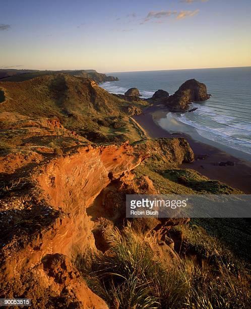 bethels beach,waitakere ranges,regional park, west coast,nr auckland, nz