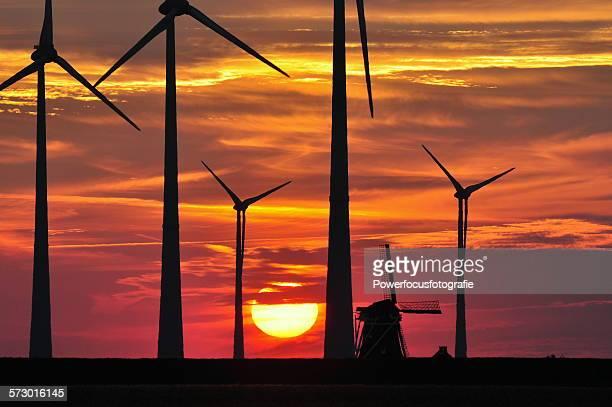 Between the Windmills