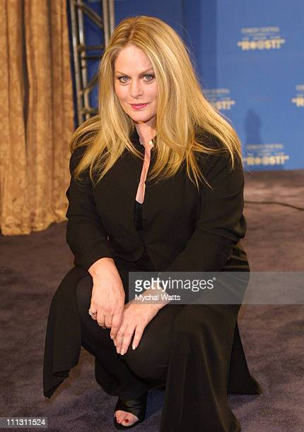 Beverly D'Angelo during New York Friars Club Roast's Chevy Chase at The New York Hilton Hotel in New York City New York United States